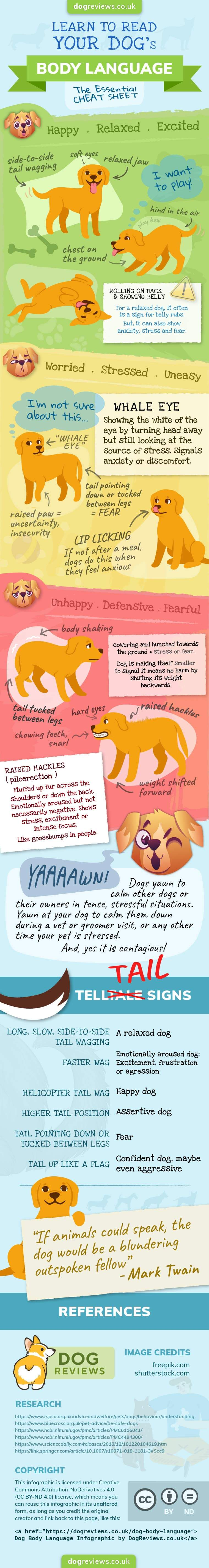 dog body language infographic